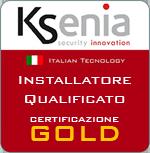 Ksenia Gold Partner